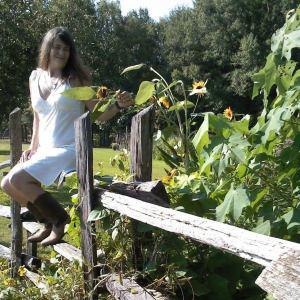 sunflowergarden1